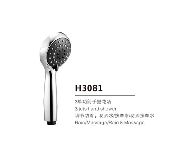 H3081